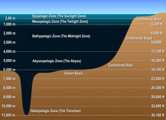 ocean-layers-diagram